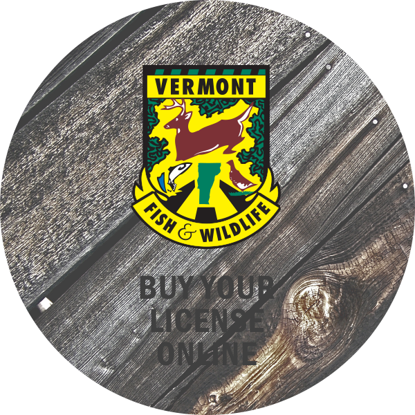 Travel vermont fishing in vermont for Fishing license vt