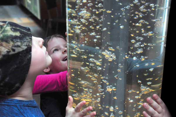 Kids view the Into The Lake exhibit at Echo, Leahy Center for Lake Champlain.