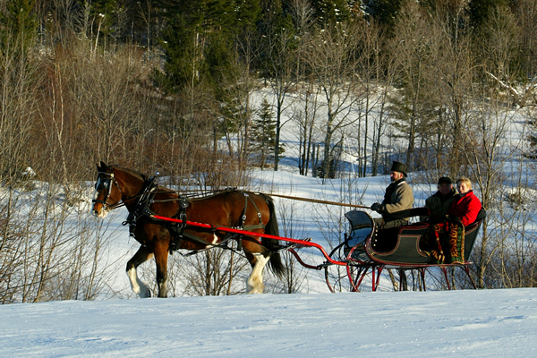 Mad River Sleigh Ride