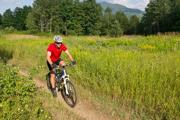 A mountain biker rides through a field.