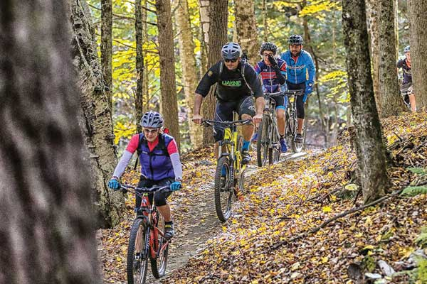 A group of mountain bikers riding on a wooded trail.