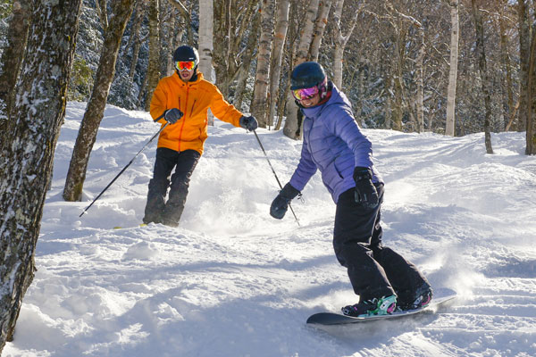 A skier and a snowboarder enjoy a gladed trail on a sunny day.