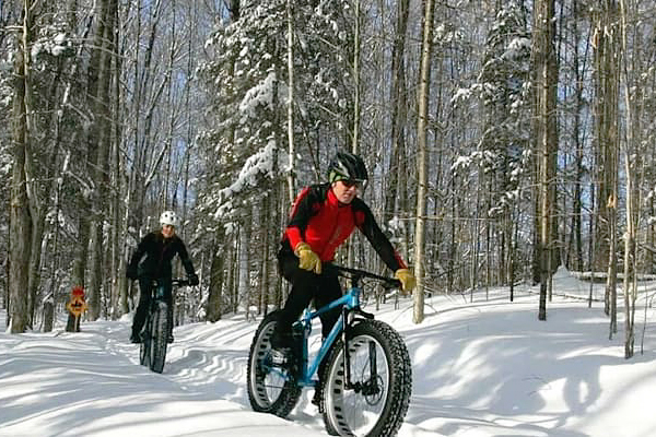 Fat bike riders riding thru the woods