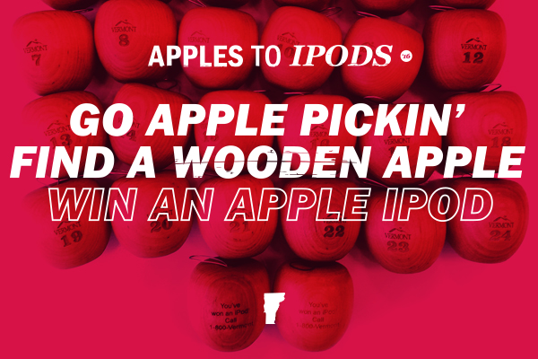 24 wooden apples lined up for 2016 promo.