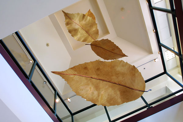 Fall leaves hang in a contemporary art gallery.