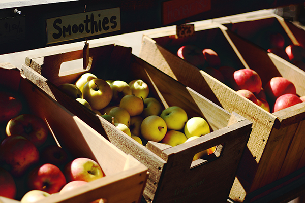 Apple Varieties at Shelburne Orchards