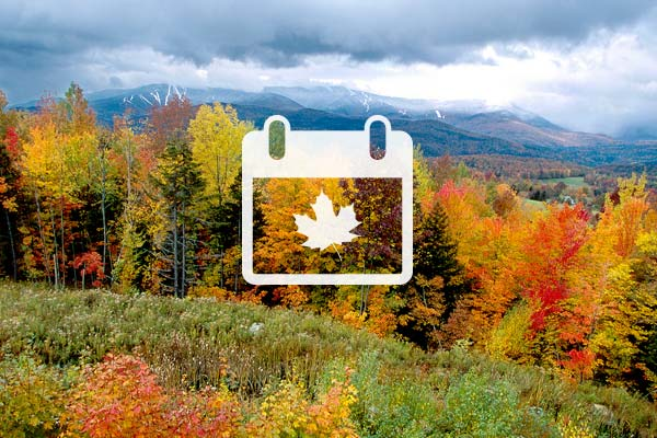 Vermont's Fall Foliage Forecaster