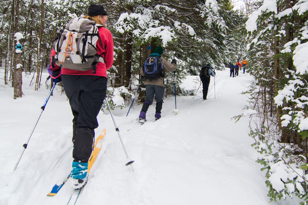 Cross country skiers on the Catamount Trail